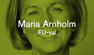 Maria Arnholm – EU-val